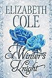 Free eBook - A Winters Knight