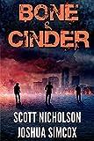 Free eBook - Bone And Cinder