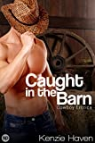 Free eBook - Caught in the Barn
