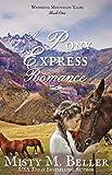 Free eBook - A Pony Express Romance