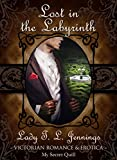 Free eBook - Lost in the Labyrinth