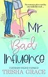 Free eBook - Mr  Bad Influence