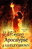 Free eBook - Witches Of The Apocalypse