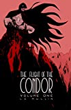 Free eBook - The Flight of the Condor