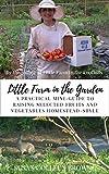 Free eBook - Little Farm in the Garden