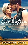 Free eBook - Combustion