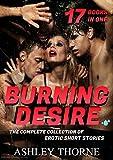 Free eBook - Burning Desire