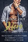 Free eBook - Holding Out for a Hero