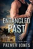 Free eBook - Entangled Past