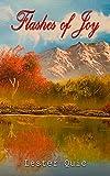 Free eBook - Flashes of Joy
