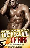 Free eBook - The Feeling of Fire