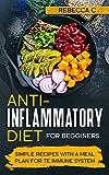 Free eBook - Anti Inflammatory Diet for Beginners