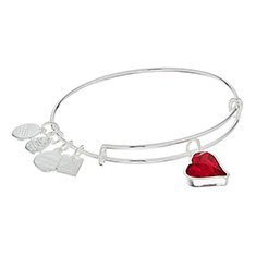 Image of a silver bracelet with a red heart