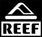 Image of Reef logo