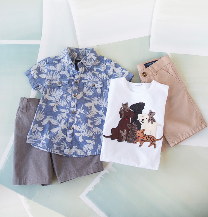 Boys' Spring And Summer Shorts, Button Ups And T-Shirts