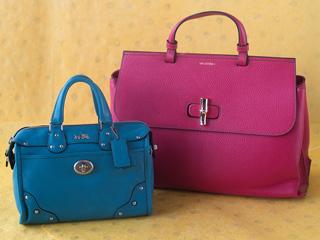 A 2/24 - Pink Valentino Bags by Mario Valentino Handbag And Blue Coach Handbag