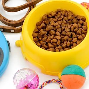 Offerte AMAZON per cani e gatti