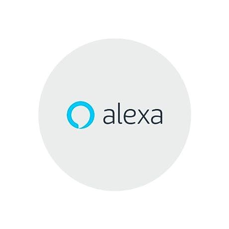 Alexa Style