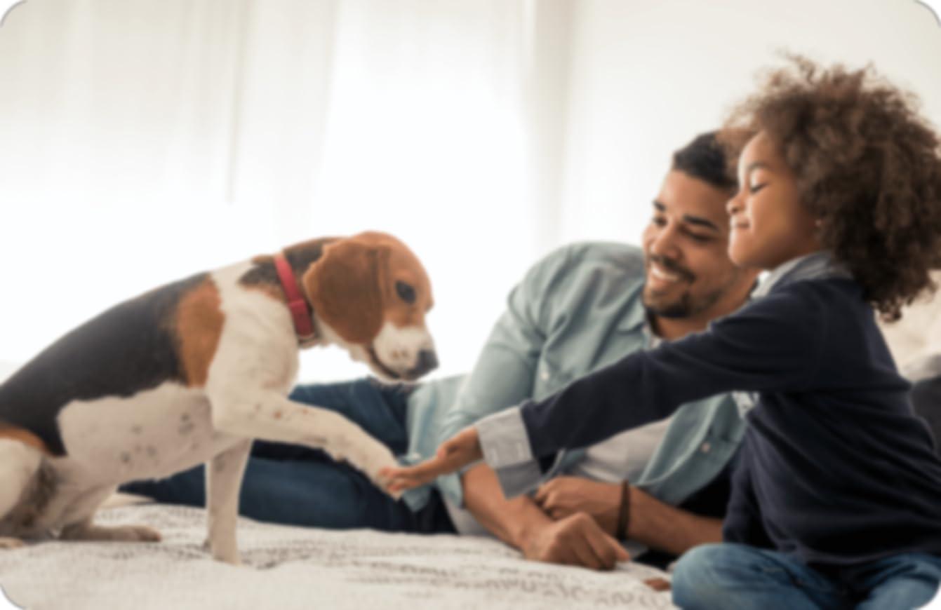 Un padre y un niño acostados en una cama con un perro que tiene su pata en la mano del niño, mientras el padre observa