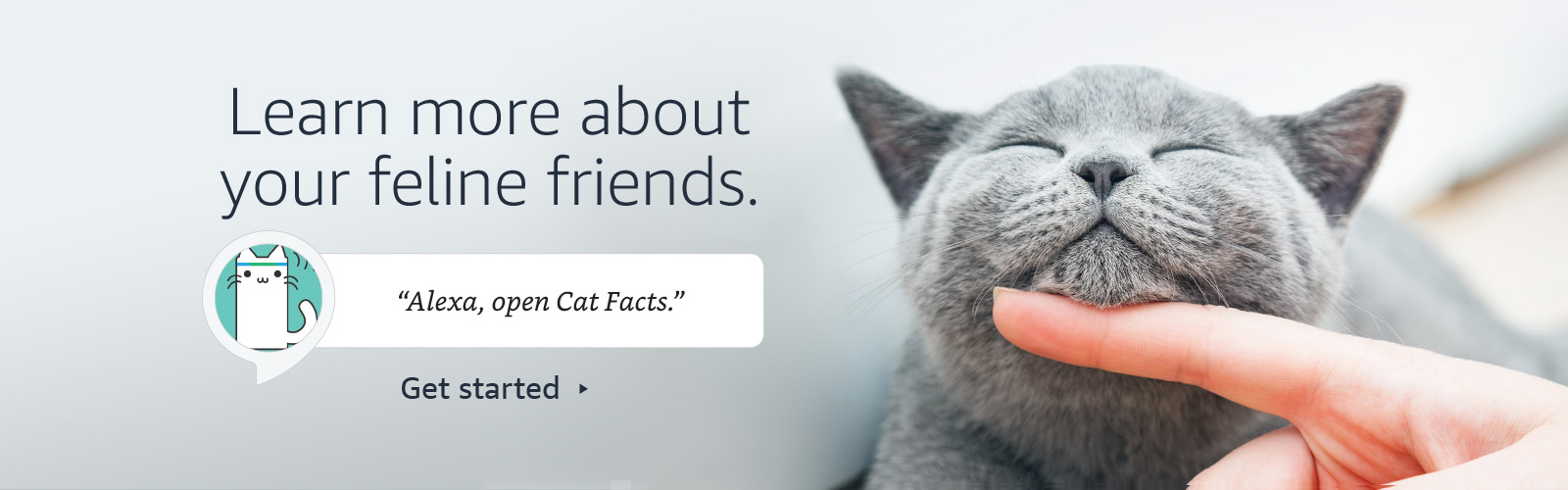 """Alexa, open Cat Facts."""