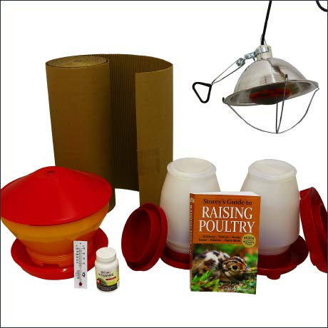 Mann Lake - brooder starter kit