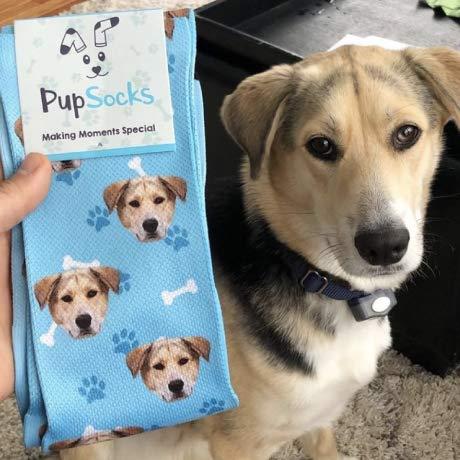 PupSocks - custom order