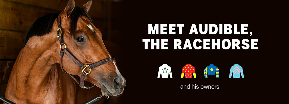 Meet Audible, The Racehorse and his owners