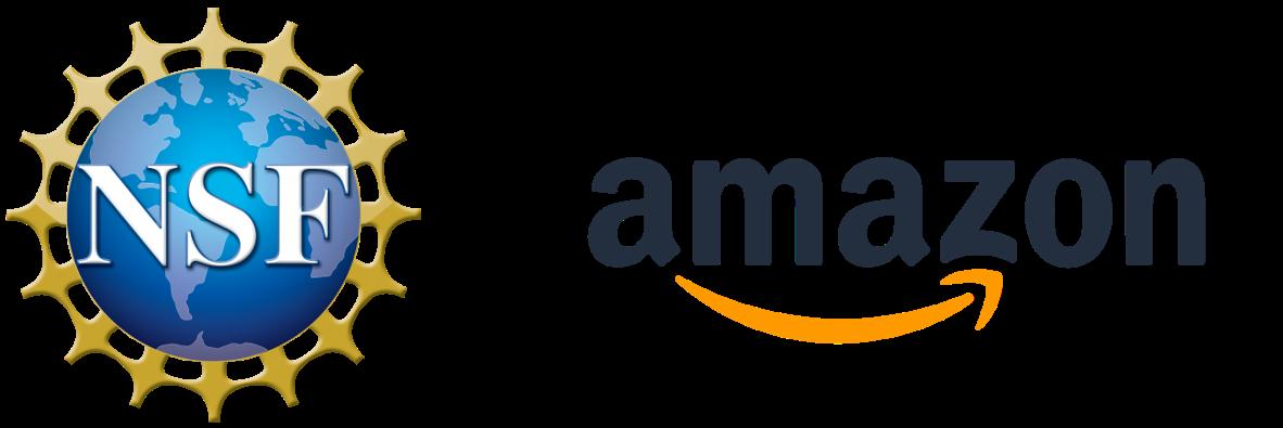 NSF-Amazon_image.png