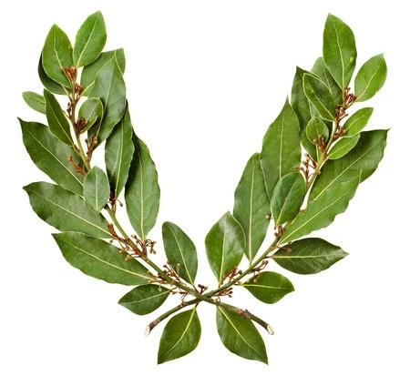 LaurelWreath.jpg