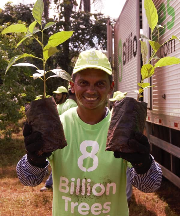 8 Billion Trees
