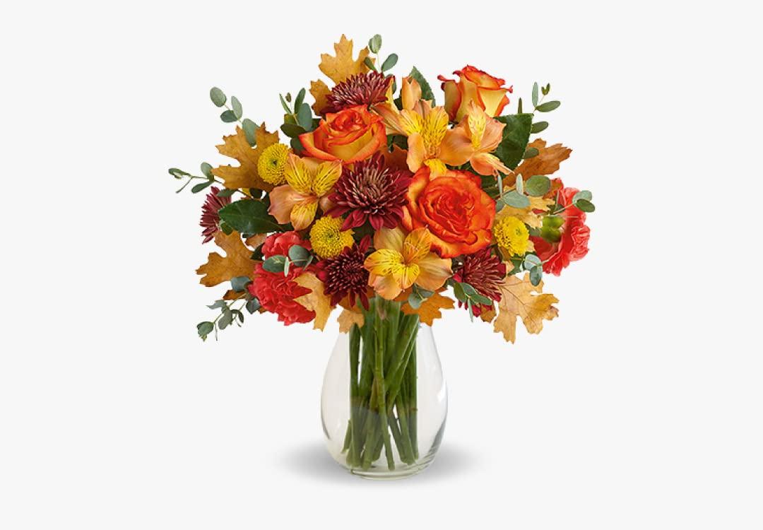 BloomsToday_DealsInline_October_1