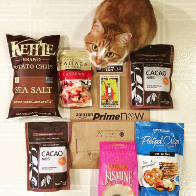 Cat with Prime Now food products
