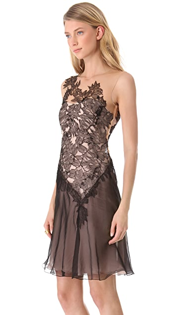 Alberta Ferretti Collection Sleeveless Lace Dress