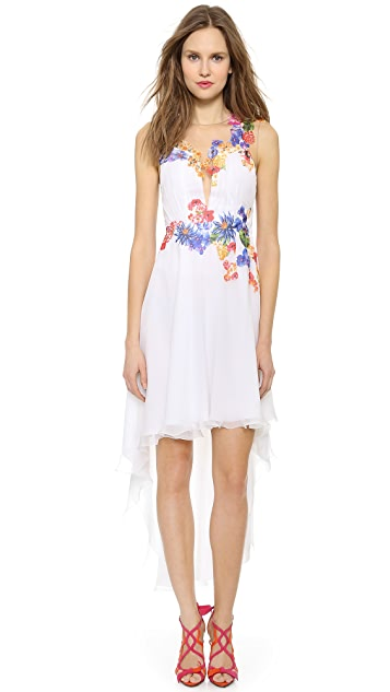 Alberta Ferretti Collection Flower Applique Dress