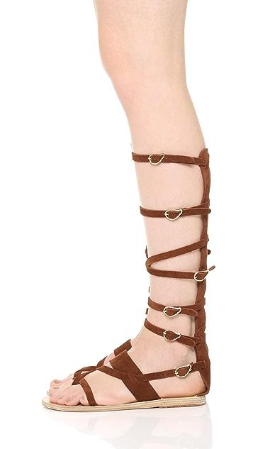 Ancient Greek Sandals Alethea High Gladiator Sandals
