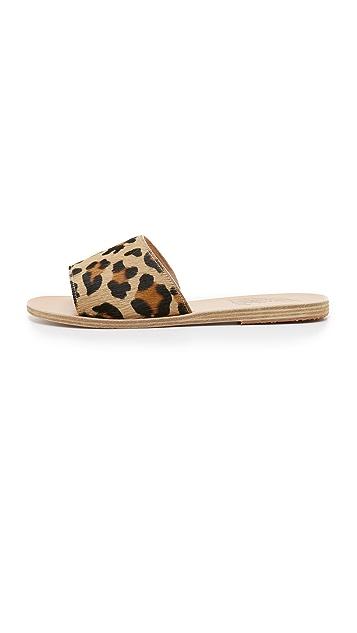 Ancient Greek Sandals Taygete Haircalf Slides