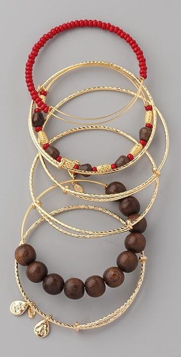 Alex and Ani Maasai Expandable Wire Bangle Set