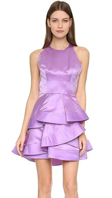 Alex Perry Caroline Dress