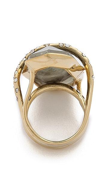 Alexis Bittar Large Orbiting Ring