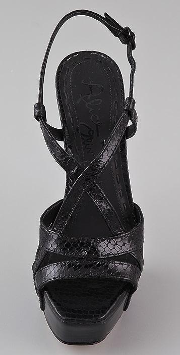 alice + olivia Leia Strappy Platform Sandals