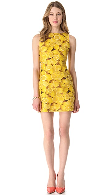 alice + olivia Candice A Line Dress