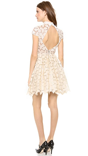 alice + olivia Jayna Lace Open Back Flare Dress
