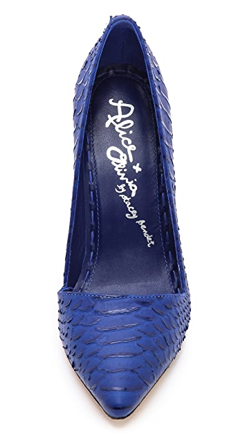alice + olivia Dina Pumps
