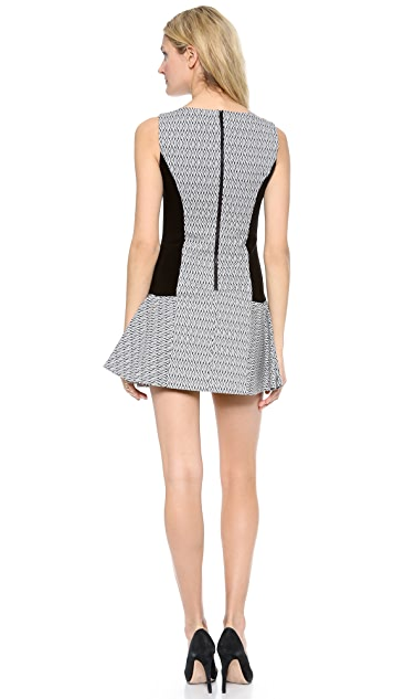 alice + olivia Bettina Drop Waist Dress with Princess Seams