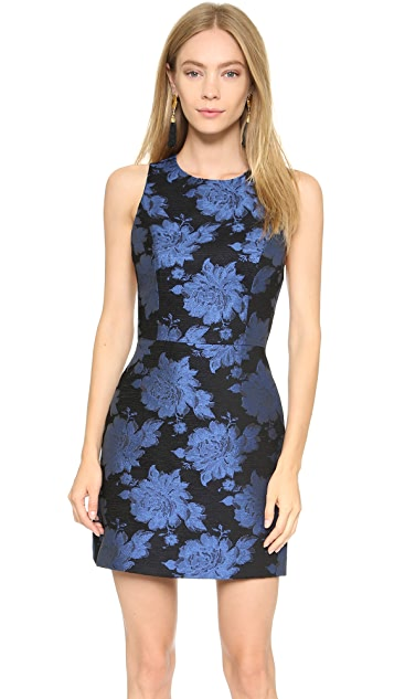 alice + olivia Ilene A Line Open V Back Dress