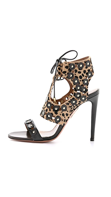 Aquazzura Rebel Studded Haircalf Pumps
