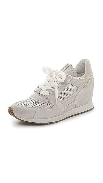385f785ddad Ash Dean Mesh Sneakers