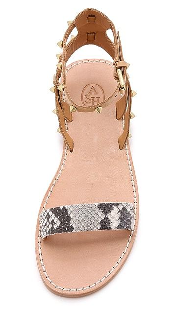 Ash Podium Sandals