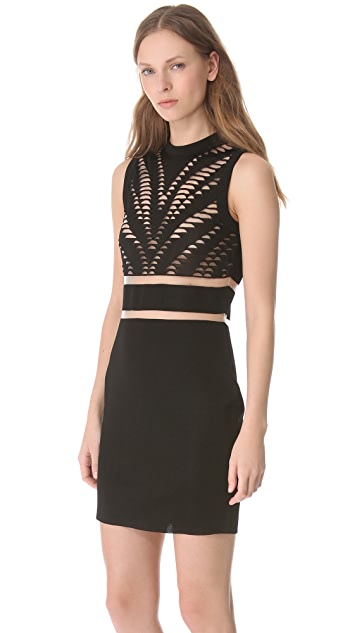 Alexander Wang Engineered Zebra Tank Dress