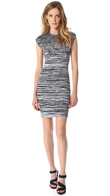 Alexander Wang Stretchy Degrade Dress